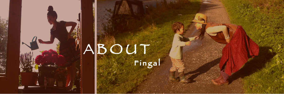 About_Fingal